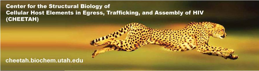 CHEETAH Conference Registration